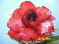 small-rose