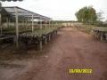 kesornthip-nursery3
